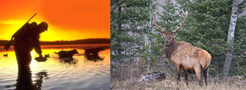 Wisconsin Hunting Vacations